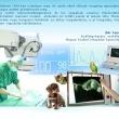 Napkelet Állatorvosi Rendelő