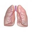 Egészségház utcai szakrendelő - Tüdőgondozó