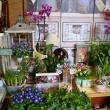 Virág Stúdió - Home Center