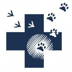 Rákosligeti Állatorvosi Rendelő és Kisállatkórház