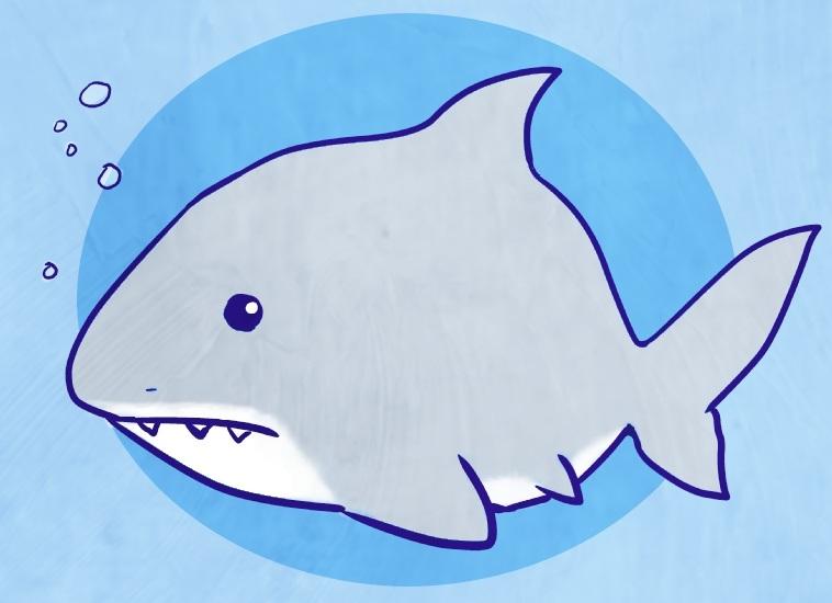 Persze cápával fogtok a legkevésbé találkozni....